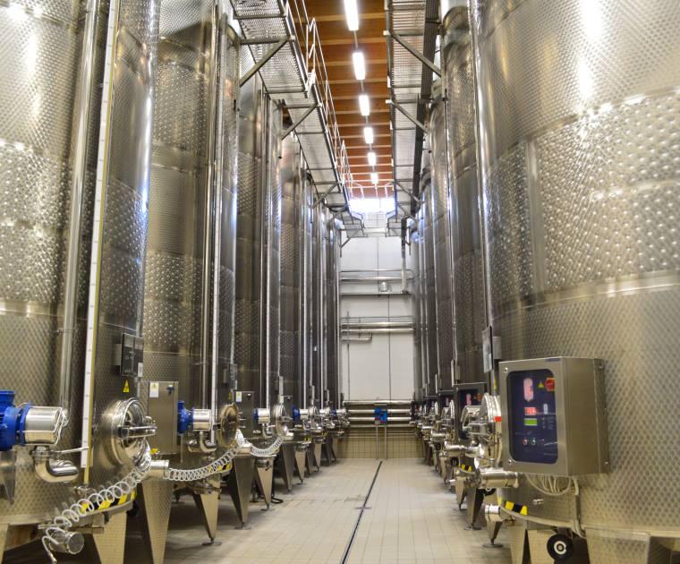 Wein – Industrie, die schmeckt